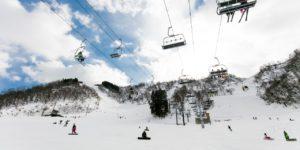 白山一里野スキーバスツアー画像②